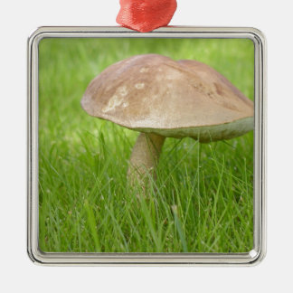 Mushroom Meadow Field Silver-Colored Square Decoration