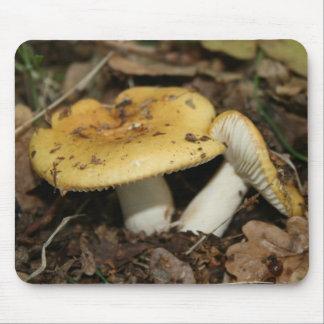 Mushroom Mouse Mat