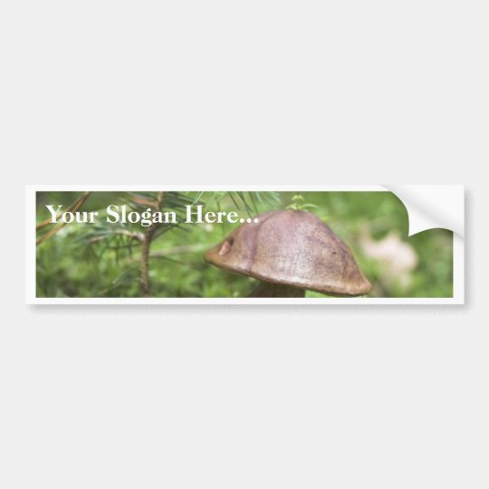 Mushroom On Moss Bumper Sticker