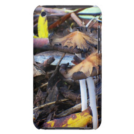 Mushroom on Rainforest Floor BarelyThere case iPod Touch Covers