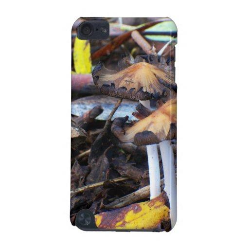 Mushroom on Rainforest Floor Speck case iPod Touch 5G Case