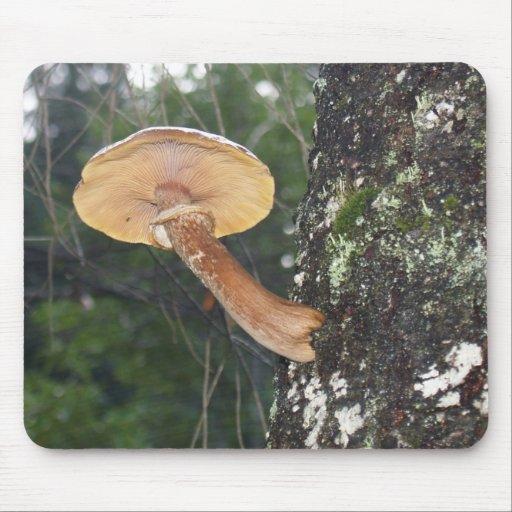 Mushroom on Tree Trunk Mousepad