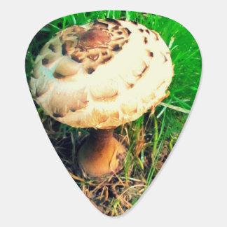 Mushroom Plectrum