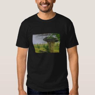 Mushroom Rock State Park II Tshirt
