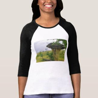 Mushroom Rock State Park Kansas t shirt