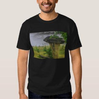 Mushroom Rock State Park Tee Shirt