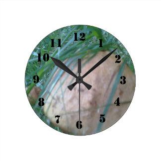 Mushroom. Round Clock
