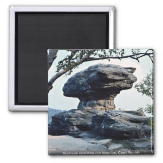 Mushroom sand-stone rock formation, Czech Republic Square Magnet