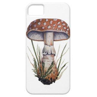 Mushroom Vintage Print Amanita Rubescens Fungus iPhone 5 Cover