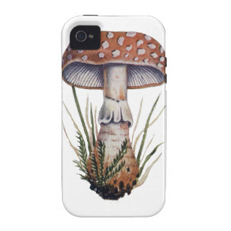 Mushroom Vintage Print Amanita Rubescens Fungus iPhone 4 Cover