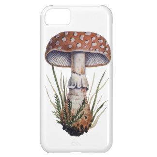 Mushroom Vintage Print Amanita Rubescens Fungus iPhone 5C Cases