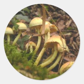 Mushroom Wonderland Classic Round Sticker