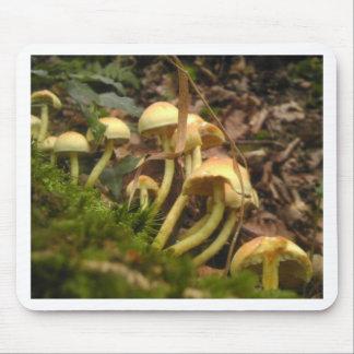 Mushroom Wonderland Mouse Pad