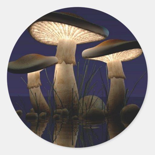 Mushrooms by J. Matthew Root Round Stickers