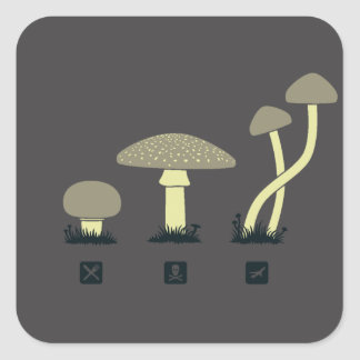 Mushrooms (food, poison, high) square sticker