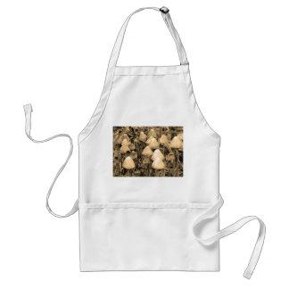 Mushrooms in Sepia Standard Apron