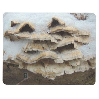 Mushrooms In Winter Journal