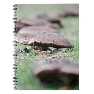 Mushrooms.jpg Spiral Notebook
