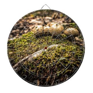 Mushrooms on a mossy mound dart board