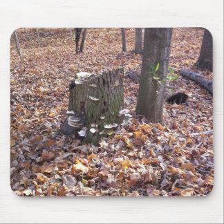 Mushrooms on Stump Mousepad