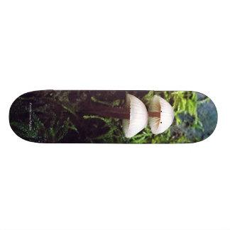Mushrooms Skateboards