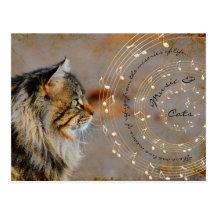 Music & Cats Postcard