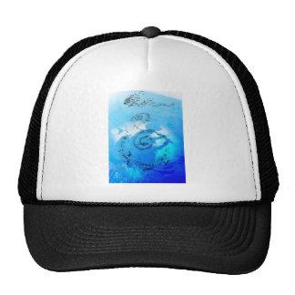 Music in Heaven Hat