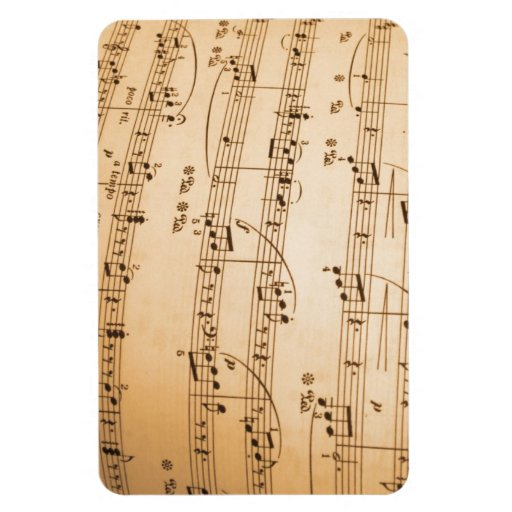 Music Notes Background Vinyl Magnet