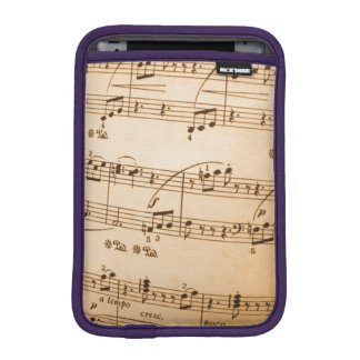 Music Notes Background Sleeve For iPad Mini