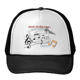 Music to the ear mesh hat