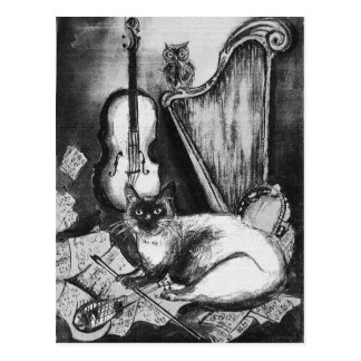 MUSICAL CAT , Black and White Postcard