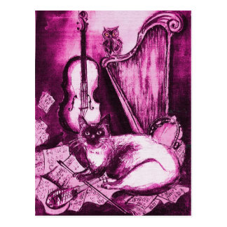 MUSICAL CAT ,Pink Violet and White Postcard
