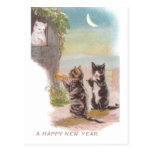 Musical Cats Play for Kitty Vintage New Year Postcard