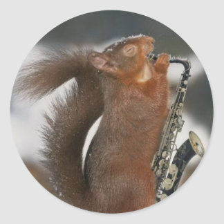 Musical Squirrel Sticker