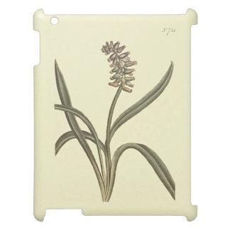 Musk Grape Hyacinth Botanical Illustration iPad Covers