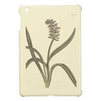 Musk Grape Hyacinth Botanical Illustration iPad Mini Cover