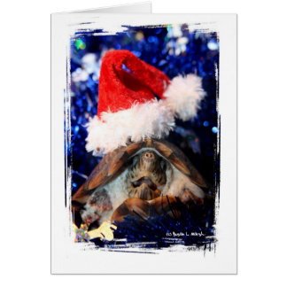 Musk Turtle Wearing Santa Hat Mouth Open Greeting Card