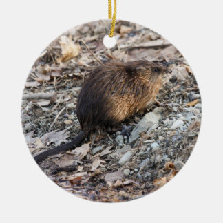 Muskrat Christmas Ornament