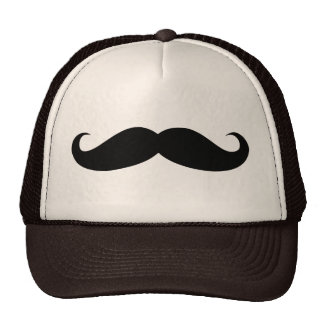 Mustache Disguise Funny Hat