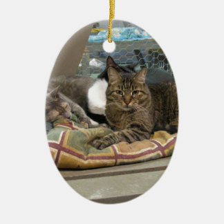Mustang and Cats Ceramic Oval Decoration