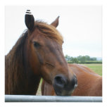 Mustang at Fence Invitation