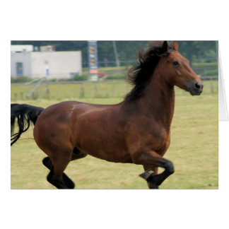 Mustang Galloping Greeting Card