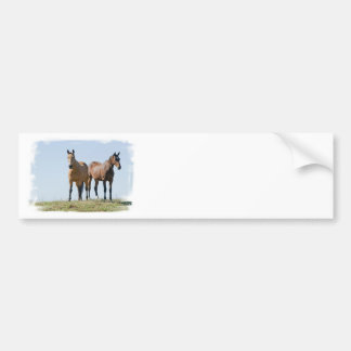 Mustang Horse Pair Bumper Stickers