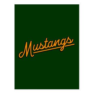 Mustangs in orange postcard