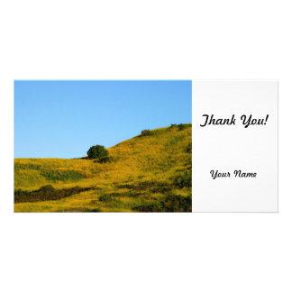 Mustard Grass Customized Photo Card