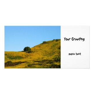 Mustard Grass Photo Card Template
