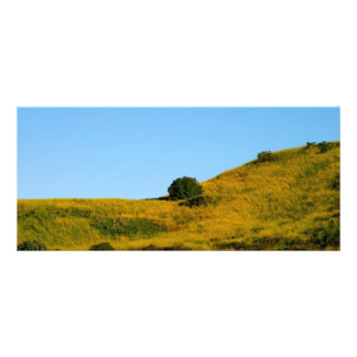 Mustard Grass Personalized Rack Card