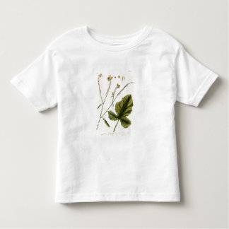 Mustard, plate 446 from 'A Curious Herbal', publis Toddler T-Shirt