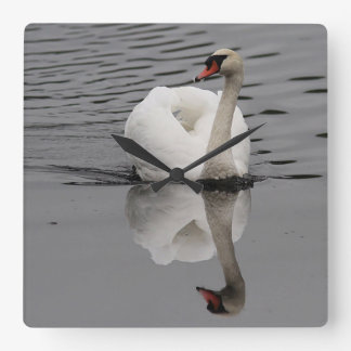 Mute Swan and reflection Square Wall Clock