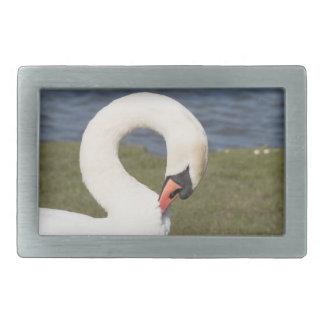 Mute Swan Belt Buckles